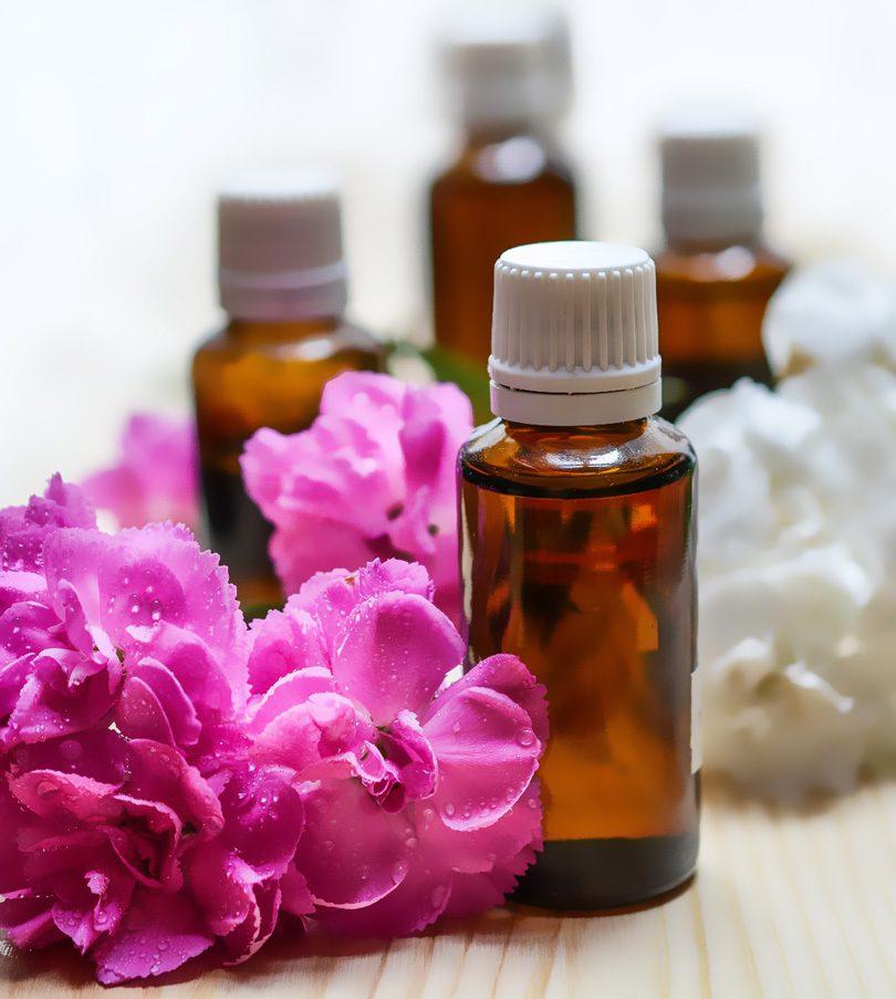 Plante benefice pentru păr frumos și strălucitor
